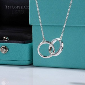 Tiffany 1837 TM Series Double Ring Ring Necklace