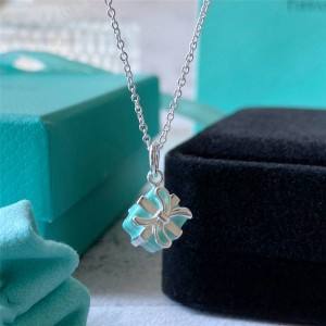 Tiffany Hong Kong official website gift box necklace