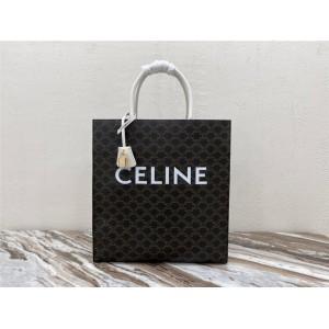 celine ABAS TRIOMPHE large canvas and calfskin vertical handbag 190402