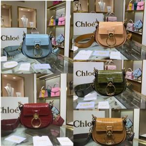 Chloe crocodile embossed small TESS handbag saddle bag