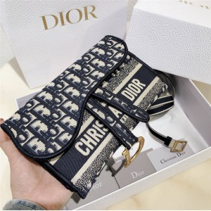 DIOR Women's OBLIQUE Printed / Embroidered Square Waist Bag S5647